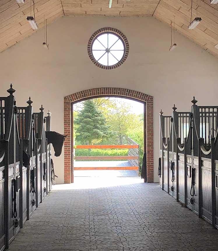 The barn on a sunny day